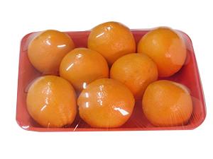 FRUIT-_-VEGETABLE-(2)